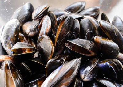 Whole Shell Mussels